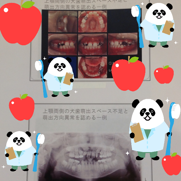 pic20160914152256_1.jpg